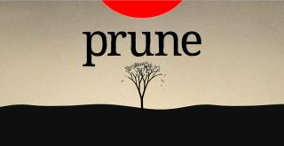 Prune sur Android