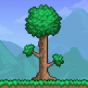Test Android Terraria